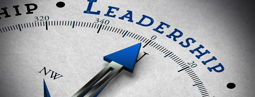 Interim Management - Führung